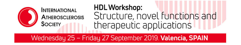 HDL Workshop 2019
